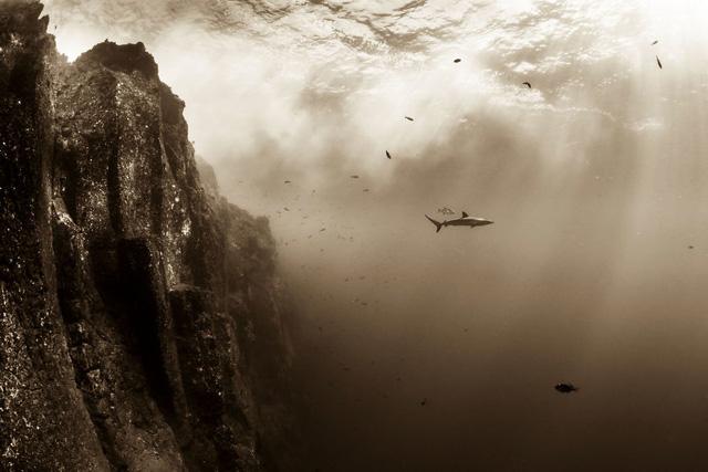 Ngỡ ngàng trước những bức ảnh thiên nhiên đẹp không tưởng - Ảnh 17.