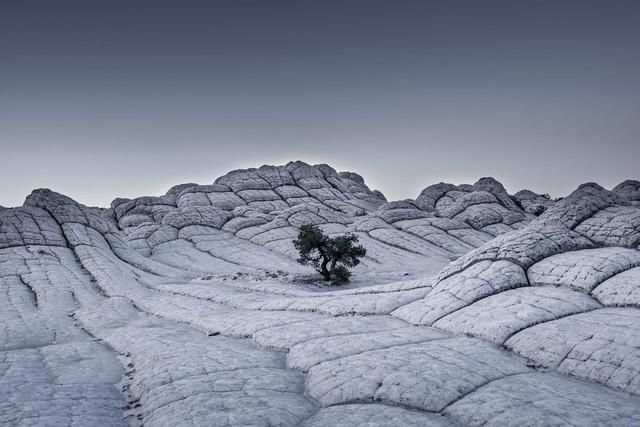 Ngỡ ngàng trước những bức ảnh thiên nhiên đẹp không tưởng - Ảnh 10.