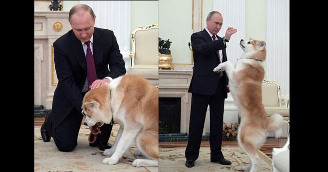 Hình ảnh đời thường của Tổng thống Nga Putin - ảnh 1