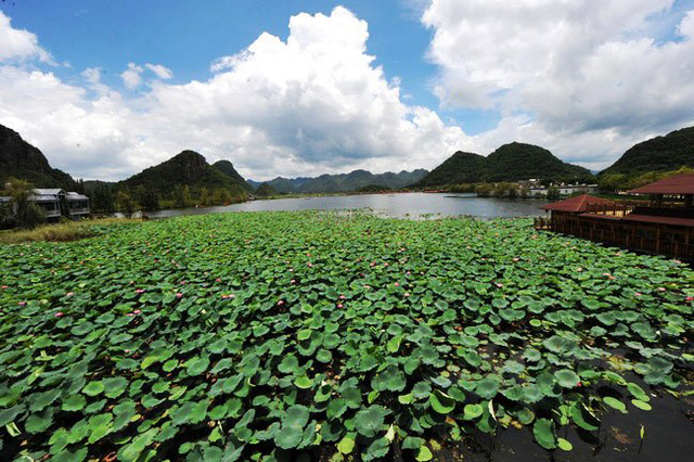 Mùa hè rực rỡ tại công viên sinh thái Puzhehei, Trung Quốc - ảnh 5
