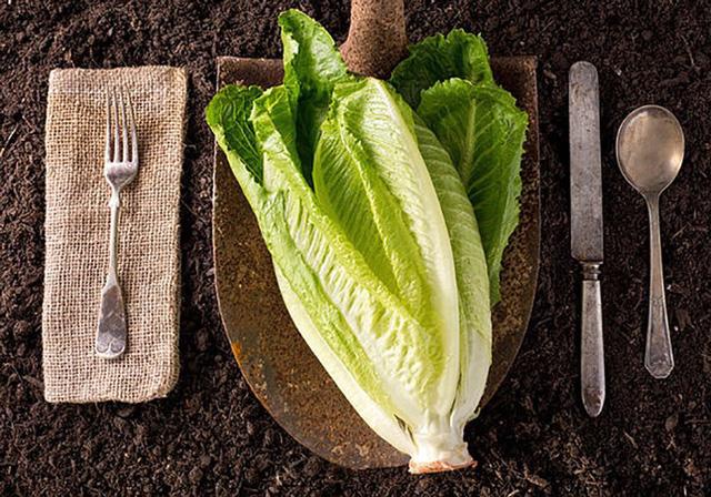 10 loại rau có ít calo nhưng giá trị dinh dưỡng rất cao - Ảnh 5.