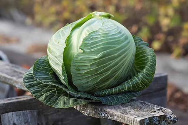 10 loại rau có ít calo nhưng giá trị dinh dưỡng rất cao - Ảnh 10.