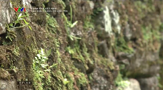 Dấu xưa ở làng cổ Lộc Yên: Những nếp nhà cổ trầm mặc, những ngõ đá đẹp mê hồn - Ảnh 2.