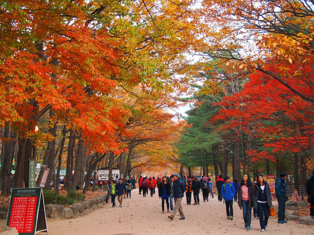 Những điểm du lịch không thể bỏ qua vào mùa thu - Ảnh 8.