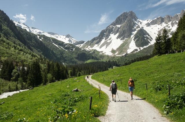 Mùa hè tuyệt đẹp trên dãy núi Alps - Ảnh 6.