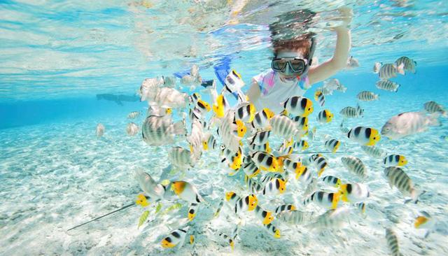 Đảo Tioman - Viên ngọc xanh biếc của Malaysia - Ảnh 7.