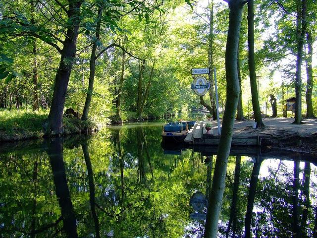 Lạc bước tới Spreewald - Venice của nước Đức - ảnh 3