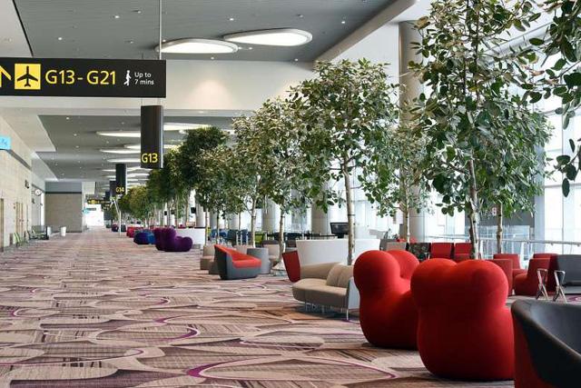 Trải nghiệm tại nhà ga không nhân viên sân bay Changi, Singapore - Ảnh 6.
