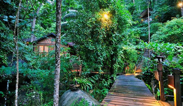 Đảo Tioman - Viên ngọc xanh biếc của Malaysia - Ảnh 8.