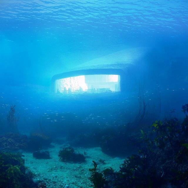 Nhà hàng dưới biển đầu tiên của châu Âu tại Na Uy - Ảnh 5.