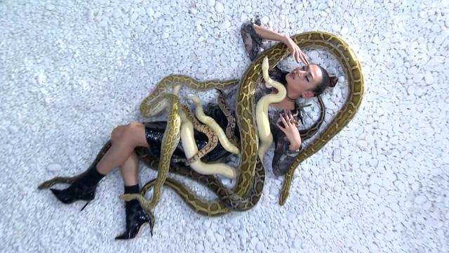Vietnams Next Top Model 2017: Thị phạm cho thí sinh, Võ Hoàng Yến chơi đùa với trăn và rắn - Ảnh 1.
