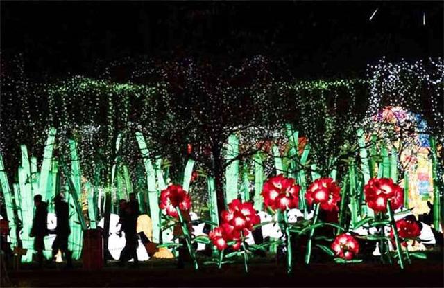 Rực rỡ triển lãm đèn lồng ở Pháp - Ảnh 3.