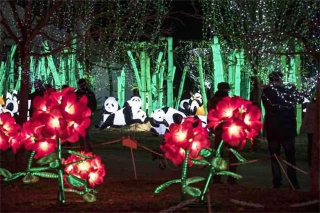 Rực rỡ triển lãm đèn lồng ở Pháp - Ảnh 7.
