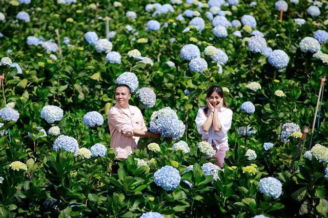 MC Hoàng Linh Chúng tôi là chiến sĩ tung ảnh cưới đẹp như mơ tại Đà Lạt - Ảnh 1.