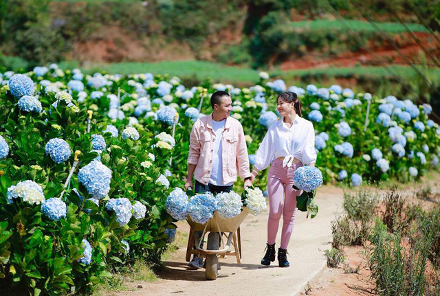 MC Hoàng Linh Chúng tôi là chiến sĩ tung ảnh cưới đẹp như mơ tại Đà Lạt - Ảnh 18.