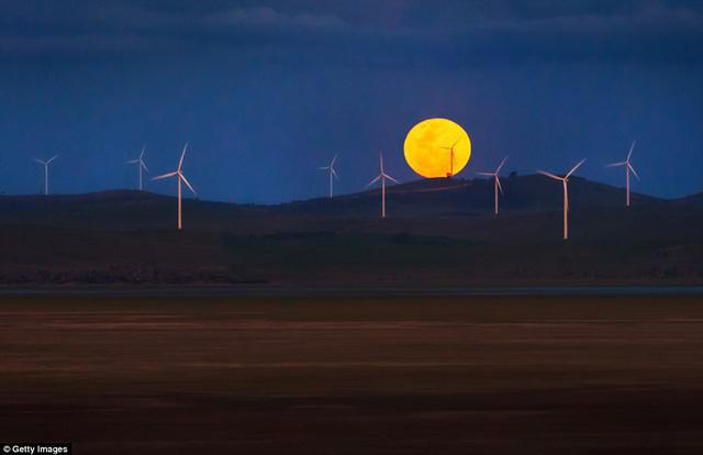 """Đẹp kì diệu trăng xanh, trăng máu và siêu trăng """"3 trong 1"""" trong đêm 31/1 - Ảnh 3"""