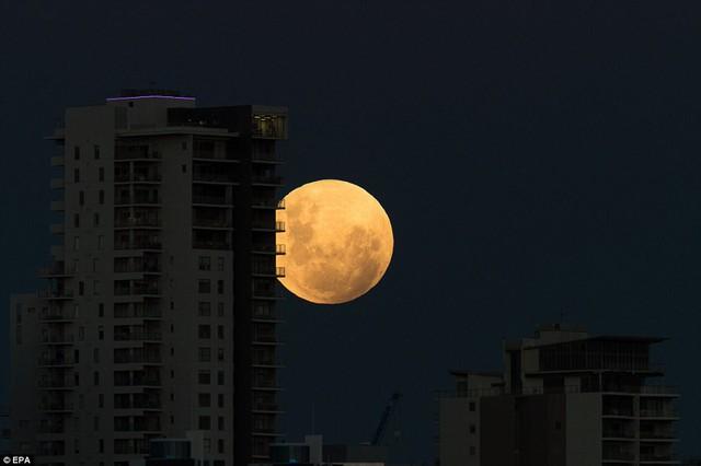 """Đẹp kì diệu trăng xanh, trăng máu và siêu trăng """"3 trong 1"""" trong đêm 31/1 - Ảnh 6"""