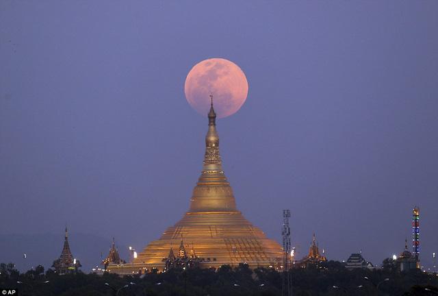 """Đẹp kì diệu trăng xanh, trăng máu và siêu trăng """"3 trong 1"""" trong đêm 31/1 - Ảnh 7"""