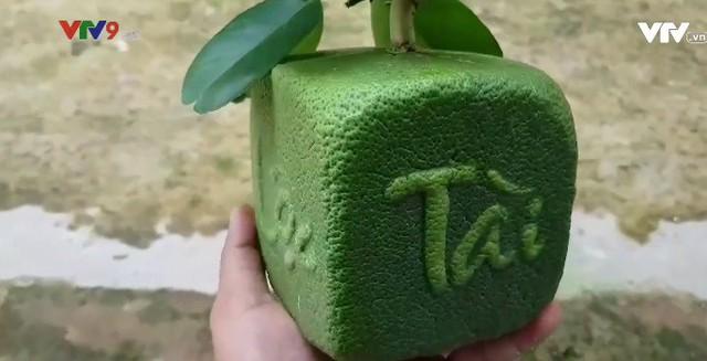 Thêm 2 sản phẩm trái cây tạo hình từ bưởi cho dịp Tết - Ảnh 1.