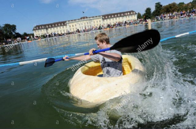 Vui nhộn cuộc thi chèo thuyền bí ngô tại Đức - Ảnh 2.