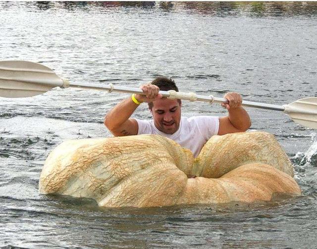 Vui nhộn cuộc thi chèo thuyền bí ngô tại Đức - Ảnh 6.