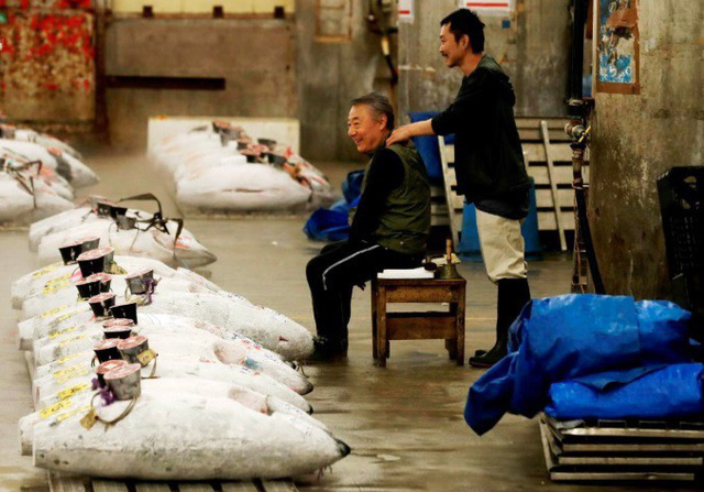 Phiên đấu giá cuối cùng năm 2018 tại chợ cá lớn nhất thế giới Tsukiji - Ảnh 4.