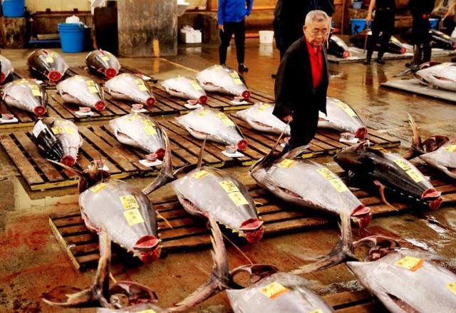 Phiên đấu giá cuối cùng năm 2018 tại chợ cá lớn nhất thế giới Tsukiji - Ảnh 1.