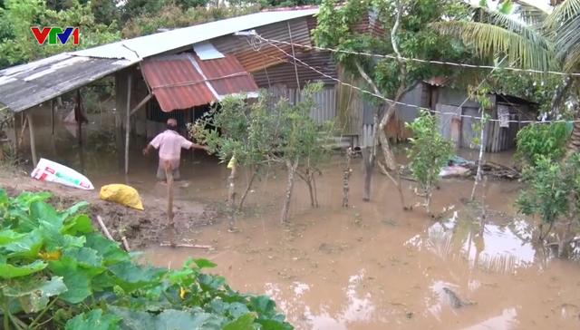 Nguy cơ mất an toàn của hệ thống đê điều ở Việt Nam trước lũ, bão - Ảnh 1.