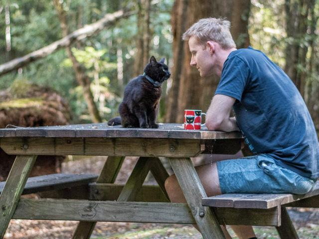 Cảm động câu chuyện về người đàn ông cùng chú mèo chu du khắp Australia - Ảnh 6.