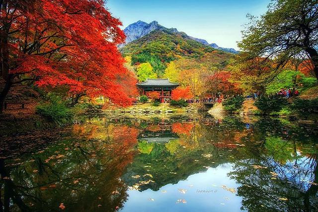 Ngỡ ngàng cảnh đẹp như chốn thần tiên ở Hàn Quốc - Ảnh 12.