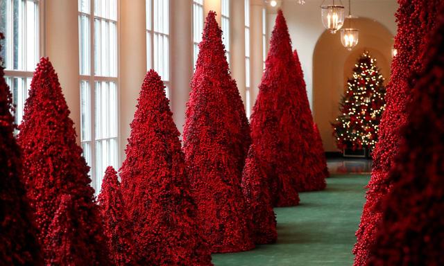 Khung cảnh Giáng sinh ở Nhà Trắng năm nay sẽ thế nào? - Ảnh 7.