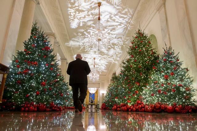 Khung cảnh Giáng sinh ở Nhà Trắng năm nay sẽ thế nào? - Ảnh 3.