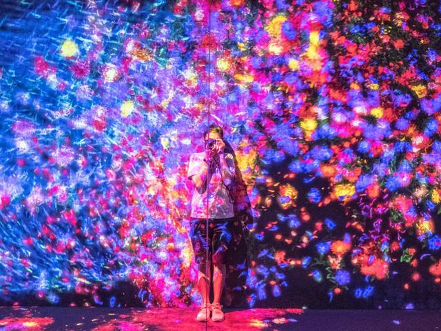 Lọt vào thế giới ảo tại bảo tàng kỹ thuật số Nhật Bản - Ảnh 5.