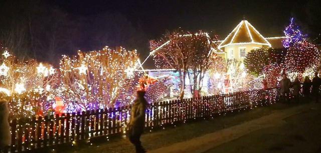 Rực rỡ ngôi nhà Giáng sinh ở Áo - Ảnh 1.