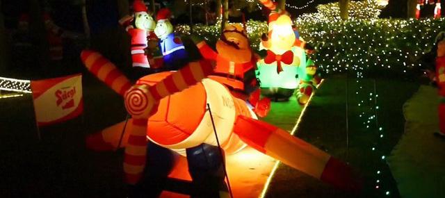 Rực rỡ ngôi nhà Giáng sinh ở Áo - Ảnh 6.