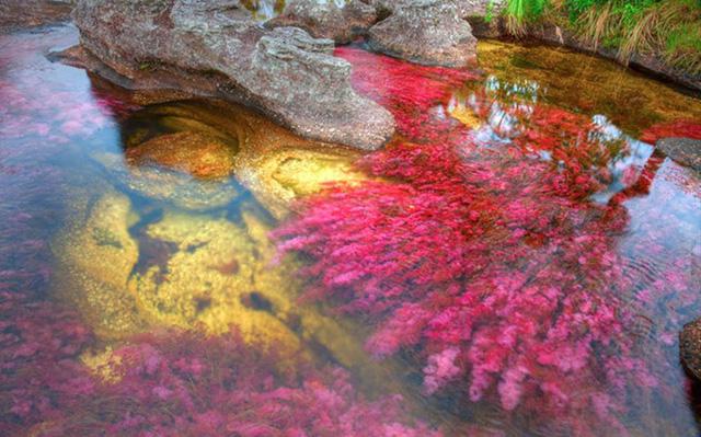 Những dòng sông dài và đẹp nhất thế giới - Ảnh 15.