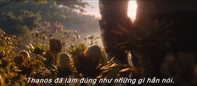 Avengers: End Game - Hiện thực tàn khốc còn lại sau cuộc chiến vô cực - Ảnh 4.