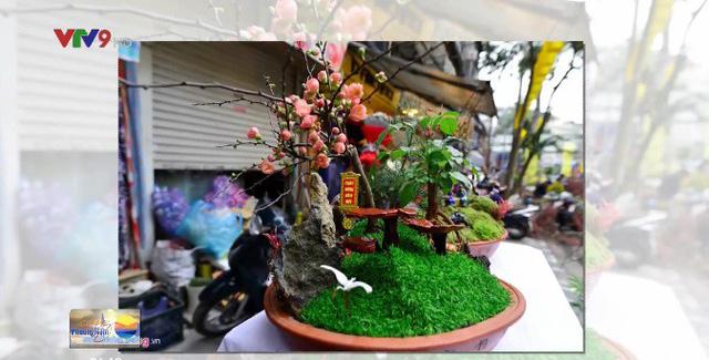 Nấm linh chi biến thành cây cảnh độc đáo trưng bày dịp Tết - ảnh 3