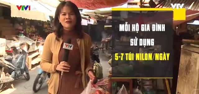 Túi nilon gây hại cho môi trường và sức khỏe như thế nào?