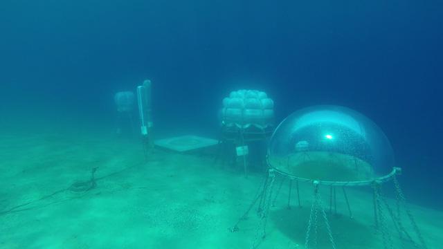 Dự án trồng rau dưới biển đối phó với biến đổi khí hậu - Ảnh 2.