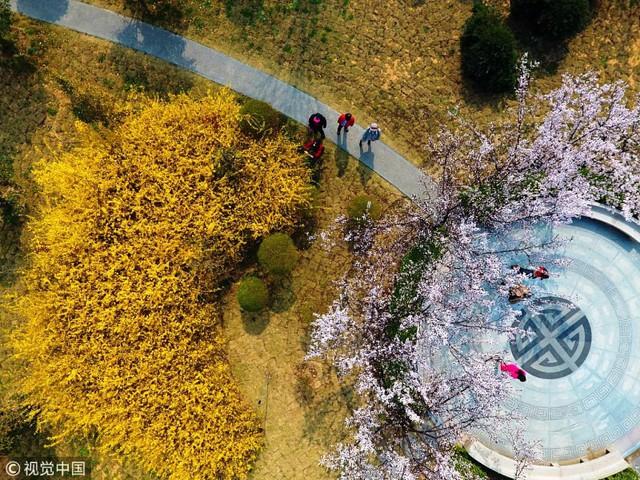 Mùa hoa nở Trung Quốc thu hút hàng ngàn khách du lịch - Ảnh 10.