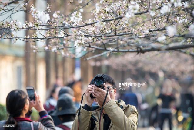 Mùa hoa nở Trung Quốc thu hút hàng ngàn khách du lịch - Ảnh 15.