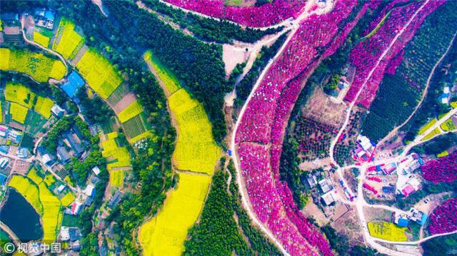 Mùa hoa nở Trung Quốc thu hút hàng ngàn khách du lịch - Ảnh 17.