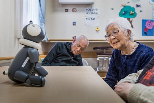 Robot biết làm nũng, khóc nhè mang lại niềm vui cho người già - Ảnh 1.