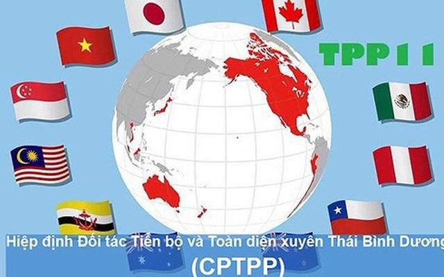 Các doanh nghiệp Việt Nam được hưởng lợi như thế nào từ CPTPP? - Ảnh 1.