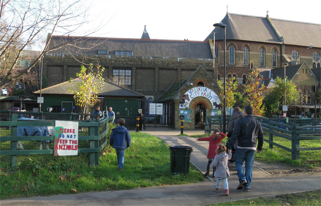 Trang trại thú nuôi vô cùng đáng yêu tại thành phố London - Ảnh 6.