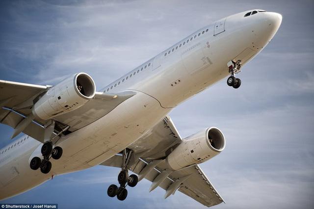 Năm 2020, hành khách đi máy bay sẽ có giường nằm? - Ảnh 4.
