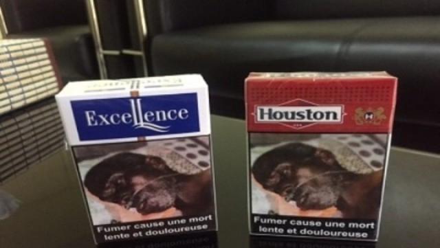 Senegal cảnh báo người dân về hiểm họa của thuốc lá - Ảnh 1.