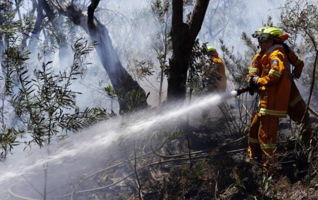 Cháy rừng nghiêm trọng ở ngoại ô Sydney, Australia - Ảnh 4.