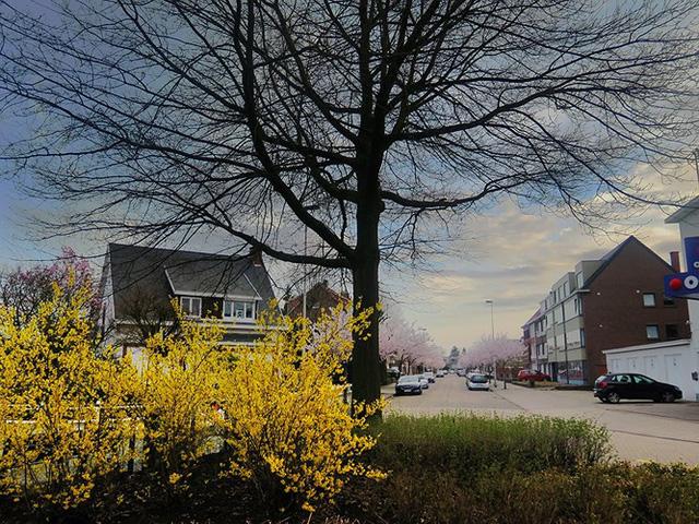 Ngắm cảnh đẹp như tranh vẽ tại Bỉ vào tháng 4 - Ảnh 1.